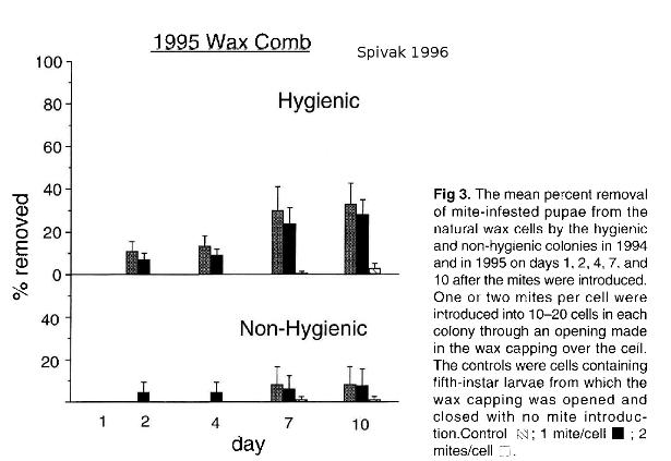 Comportement hygiénique et varroa